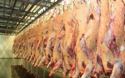 Exportações de carnes 'in natura' alcançam US$ 1 bilhão em janeiro